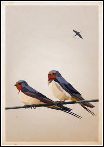 Swallows Plakat