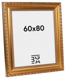 Birka Premium Gull 60x80 cm