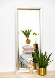 Speil Hotagen Sølv 50x130 cm