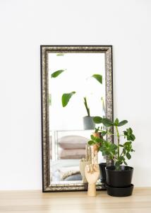 Speil Ottsjö Gråbrun 40x80 cm