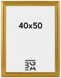 Västkusten Gull 14A 40x50 cm