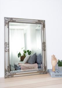 Speil Bologna Sølv 50x70 cm