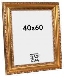 Birka Premium Gull 40x60 cm