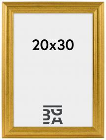 Västkusten Gull 20x30 cm