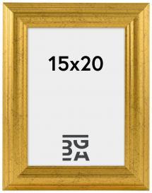 Västkusten Gull 14A 15x20 cm