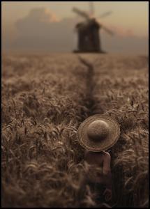 The Boy In The Field Plakat