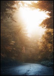 Autumn Misty Road Plakat