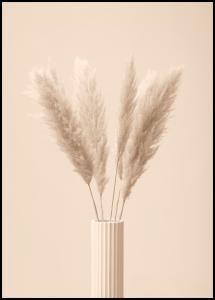Pampas Grass III Plakat