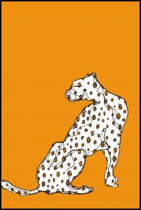 Cheetah Plakat