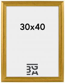Västkusten Gull 14A 30x40 cm