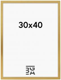 Frame Gold 30x40 cm