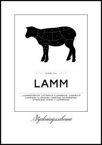 Oppdelingsplansje Svin Poster