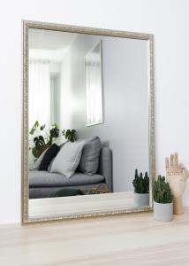 Speil Nost Sølv 50x70 cm