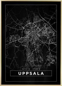 Kart - Uppsala - Poster - Svart
