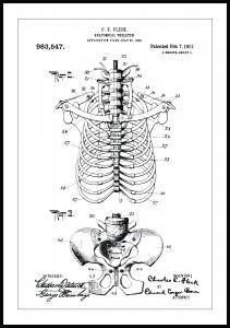 Patenttegning - Skjelett II - Poster