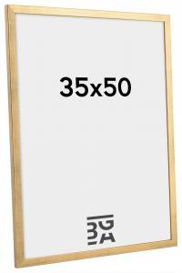 Galant Gull 35x50 cm