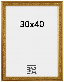 Nostalgia Gull 30x40 cm