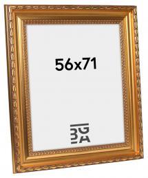 Birka Premium Gull 56x71 cm