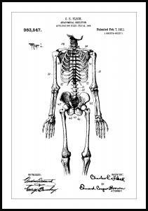 Patenttegning - Skjelett I - Poster Plakat