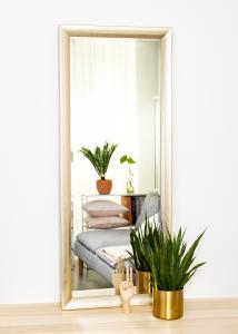 Speil Olden Sølv 60x150 cm