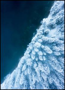 Frosty Forest Plakat
